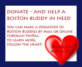 DONATE - SIDEBAR BUTTON copy